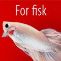 Særtilbud til fisk