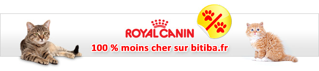 Croquettes Royal Canin Breed pour chat