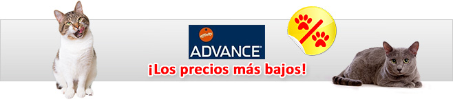 Advance Affinity pienso para gatos