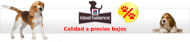 Hill's Ideal Balance pienso para perros