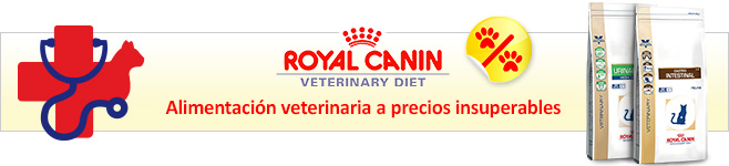 Royal Canin Veterinary pienso para gatos