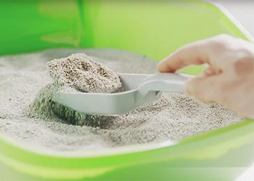 apelmazamiento de la arena tigerino canada
