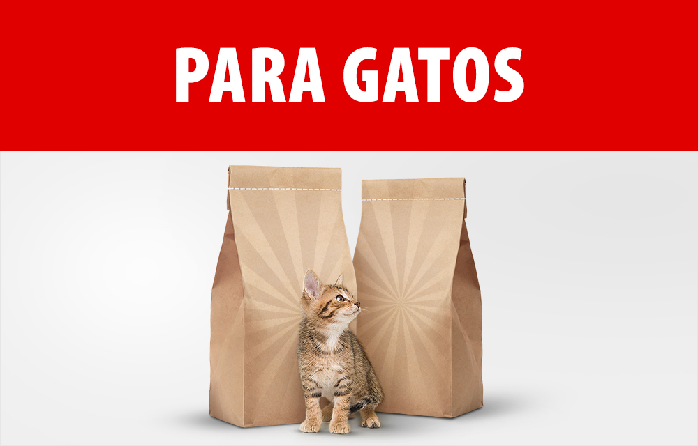 Packs económicos para gatos