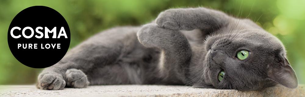 Cosma Katzenfutter